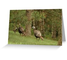 Holy Hill Turkeys Greeting Card