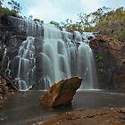 Mackenzie Falls by Danny  Waters