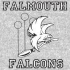 Falmouth Falcons Quidditch by ashleykathrine