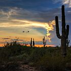 A Southwestern Sunset  by Saija  Lehtonen