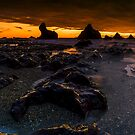 Seal Point Panoramic by Paul Mercer