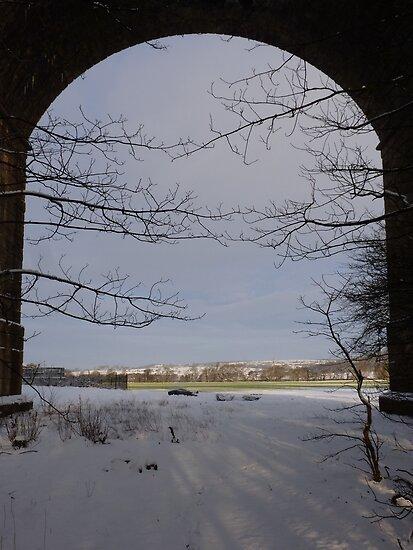 Arthington Viaduct Frame by acespace