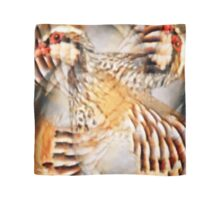 Designs Inspired By Nature: Wild Partridge Scarf