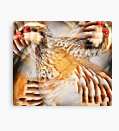 Designs Inspired By Nature: Wild Partridge Canvas Print