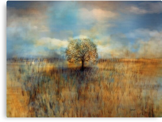 field of dreams by © Karin Taylor