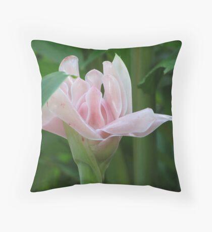 Botanic Gardens Cairns Throw Pillow