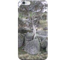 Lonely Gum tree iPhone Case/Skin
