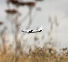 Airbus 320 in the air by mrivserg