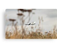 Airbus 320 in the air Canvas Print