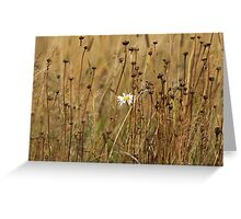 white flower on a yellow field Greeting Card