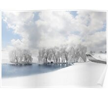 Winter Willows Poster