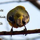 Lente!  by Elizabeth Kendall