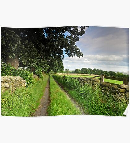 Country Lanes. Poster