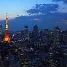 Tokyo skyline at evening by Cebas