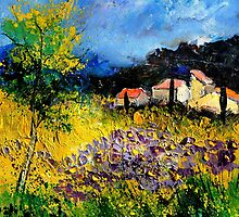 Provence by calimero