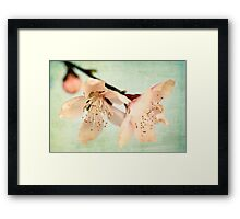 When The Wind Blows Softly, The Blossoms Whisper Your Name Framed Print