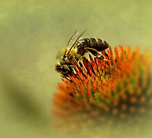 Bee mine.... by Yool
