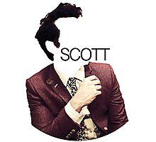 Andrew Scott Photographic Print