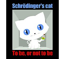 Schrödinger's Cat To be or not to be Photographic Print