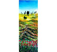 TUSCANY LANDSCAPE WITH POPPIES Photographic Print