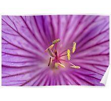 ''Macro Flower'' Poster