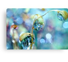 Rainbow Moss Drops Metal Print