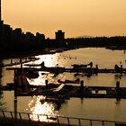 Sunset Harbour Floatplanes Evening by justforyou