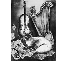 MUSICAL CAT AND OWL  Black and White Photographic Print