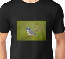 Blue tit, perched on rose branch Unisex T-Shirt
