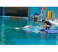 Dolphin and trainer at the Underwater World in Sentosa in Singapore Photographic Print