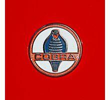 Cobra Photographic Print