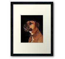 Rudy Portrait Framed Print