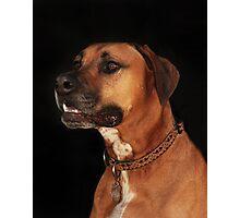 Rudy Portrait Photographic Print