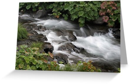 Summer Cascades - McCloud River  by Harry Snowden