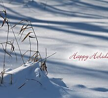 Waiting for Spring (holiday greeting card) by photoclique