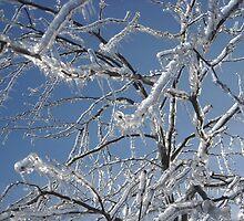Frozen Tree by littlemarin
