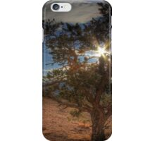 Capitol Reef National Park iPhone Case/Skin
