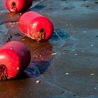 Red Buoys by Fredda Gordon