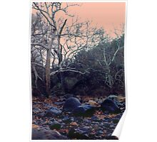 Black Stones, Pink Sky Poster