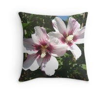The White Rose of Sharon Throw Pillow