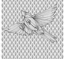 Plumes & Bird by Rayoru