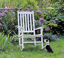 Front Row Seat by wiscbackroadz