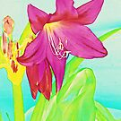 Hot Pink Crinum Lily by Sharon Woerner