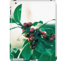 Holly bush with red berries iPad Case/Skin