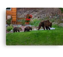 Guess who's coming for Dinner...! Canvas Print
