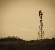Windmill - Well Plains, QLD by Sally Werner