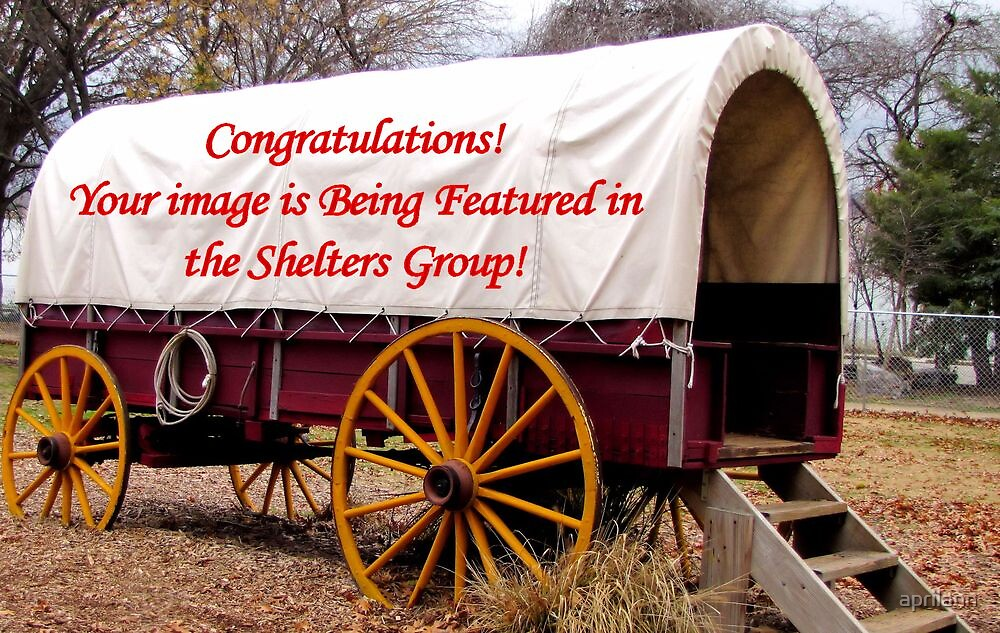 Banner - Shelters - Featured Image by aprilann
