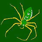 Green Spider by Gwendal