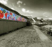 Mural at Towan Beach  by Rob Hawkins
