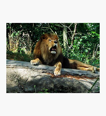 A Mighty Roar Photographic Print